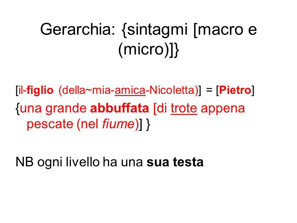 Gerarchia: {sintagmi [macro e (micro)]}
